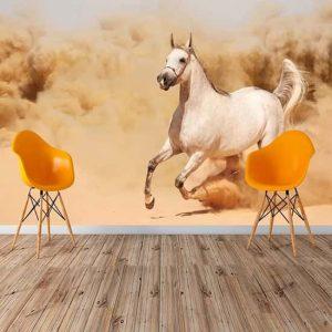 Beyaz At Duvar Kağıdı