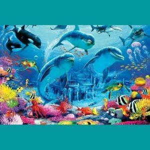 Yunuslar Canlı Doğa
